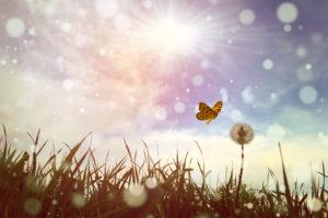Kié a változtatás ereje? – Palacskó András